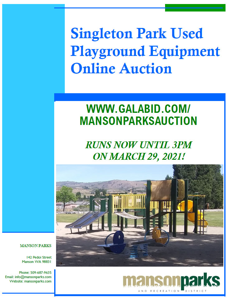 playground auction